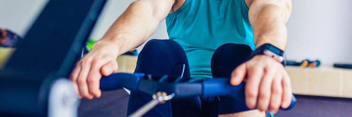 Rameur : muscles sollicités